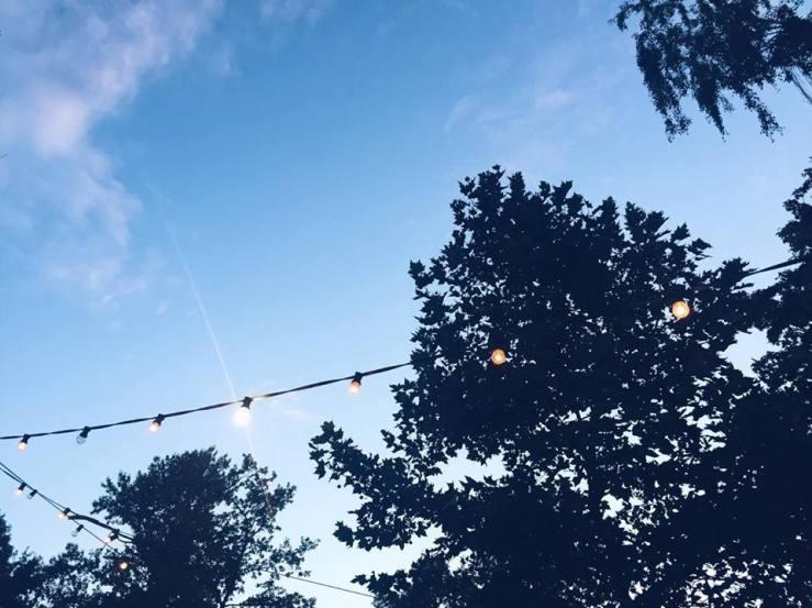 Beer Garden Sky